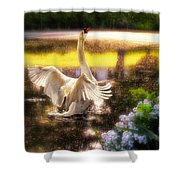 Swan Lake Shower Curtain by Lois Bryan