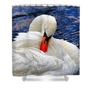 Swan Lake Shower Curtain by Mariola Bitner