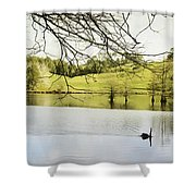 Swan Shower Curtain by Les Cunliffe