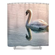 Swan On Lake Shower Curtain by Pixel  Chimp