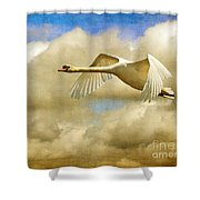 Swan Song Shower Curtain by Lois Bryan
