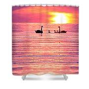 Swans on the Lake Shower Curtain by Jon Neidert