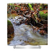 Swept Away Shower Curtain by Sharon  Talson