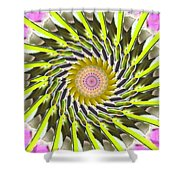 Swirl Shower Curtain by Bobbie Barth