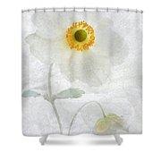 Symphony Shower Curtain by John Edwards
