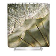 Take Me With You When You Go Shower Curtain by Jan Bickerton