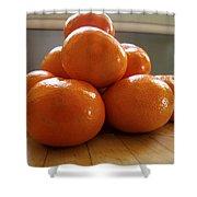 Tangerined Shower Curtain by Joe Schofield