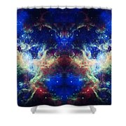 Tarantula Reflection 1 Shower Curtain by The  Vault - Jennifer Rondinelli Reilly