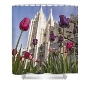 Temple Tulips Shower Curtain by Chad Dutson