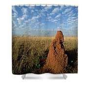 Termite Mound In Cerrado Grassland Emas Shower Curtain by Tui De Roy
