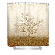 Test Of Time Shower Curtain by Scott Pellegrin