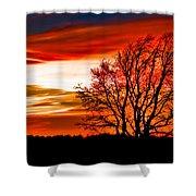 Texas Sunset Shower Curtain by Darryl Dalton