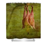 Textures Of Nature 2 Shower Curtain by Jack Zulli