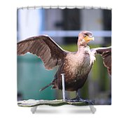 That Nail Is Not My Leg Shower Curtain by Kym Backland