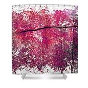 That Smile Shower Curtain by Brett Pfister