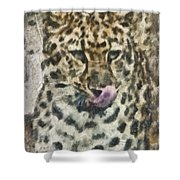 That Was Delicious Shower Curtain by Trish Tritz