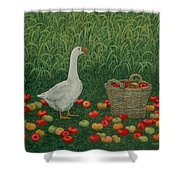 The Apple Basket Shower Curtain by Ditz