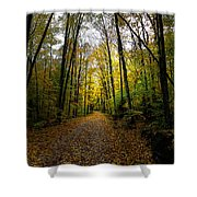 The Back Roads of Autumn Shower Curtain by David Patterson