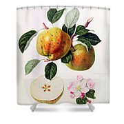 The Beauty Of Kent Shower Curtain by William Hooker