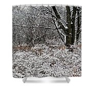 The Beauty Of Winter Shower Curtain by Aimee L Maher Photography and Art Visit ALMGallerydotcom