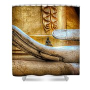 The Buddhas Hand Shower Curtain by Adrian Evans