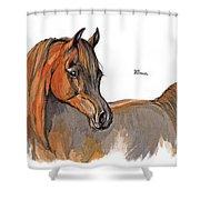 The Chestnut Arabian Horse 2a Shower Curtain by Angel  Tarantella