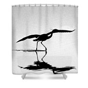 The Dance Shower Curtain by Skip Willits