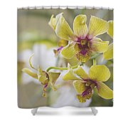 The Earth's Magic Is A Gift Of Wonder Shower Curtain by Sharon Mau