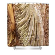 The End Of The Story Shower Curtain by Albert Joseph Moore