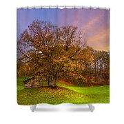 The Farm Shower Curtain by Debra and Dave Vanderlaan