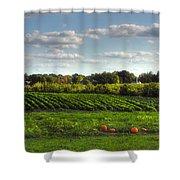 The Farm Shower Curtain by Joann Vitali