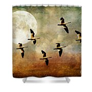 The Flight Of The Snow Geese Shower Curtain by Lois Bryan