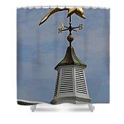 The Golden Dolphin Weathervane Shower Curtain by Juergen Roth