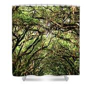 The Green Mile Savannah Ga Shower Curtain by William Dey