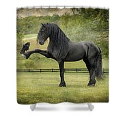 The Harbinger Shower Curtain by Fran J Scott