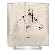 The Horse Sketch Shower Curtain by Angel  Tarantella