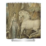 The Horse Shower Curtain by William Blake