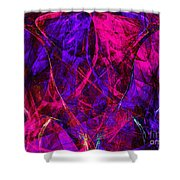 The Jester 20130510v2 Shower Curtain by Wingsdomain Art and Photography