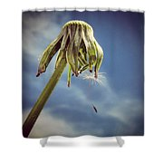 The Last Wish Shower Curtain by Marianna Mills