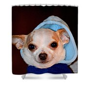The Lightweight Contender Shower Curtain by Maria Urso