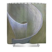 The Lone Lily Shower Curtain by Ginny Neece