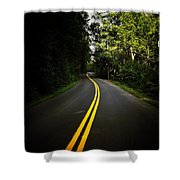 The Long And Winding Road Shower Curtain by Natasha Marco