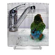 The Lovebird's Shower Shower Curtain by Terri  Waters