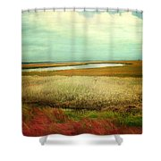 The Low Country Shower Curtain by Amy Tyler