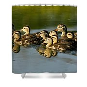 The Morning Rush Shower Curtain by Robert Frederick