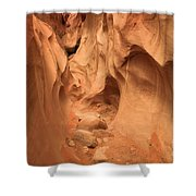 The Narrows Ahead Shower Curtain by Adam Jewell