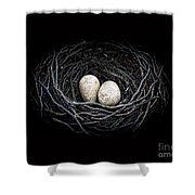 The Nest Shower Curtain by Edward Fielding