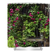 The Old Barn Window Shower Curtain by Debra and Dave Vanderlaan