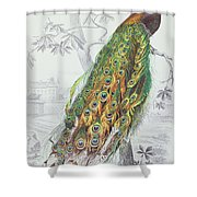 The Peacock Shower Curtain by A Fournier