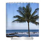 The Perfect Palm Tree - Sunset Beach Oahu Hawaii Shower Curtain by Brian Harig